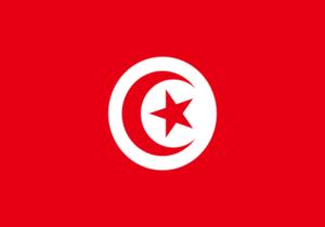 Tunesien Flagge WM 2018 wettbonus.net
