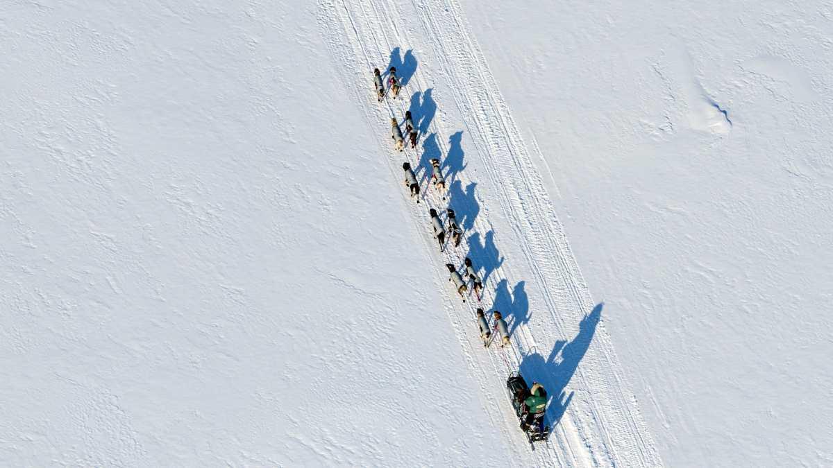 Top10: Die gefährlichsten Sportarten - Iditarod