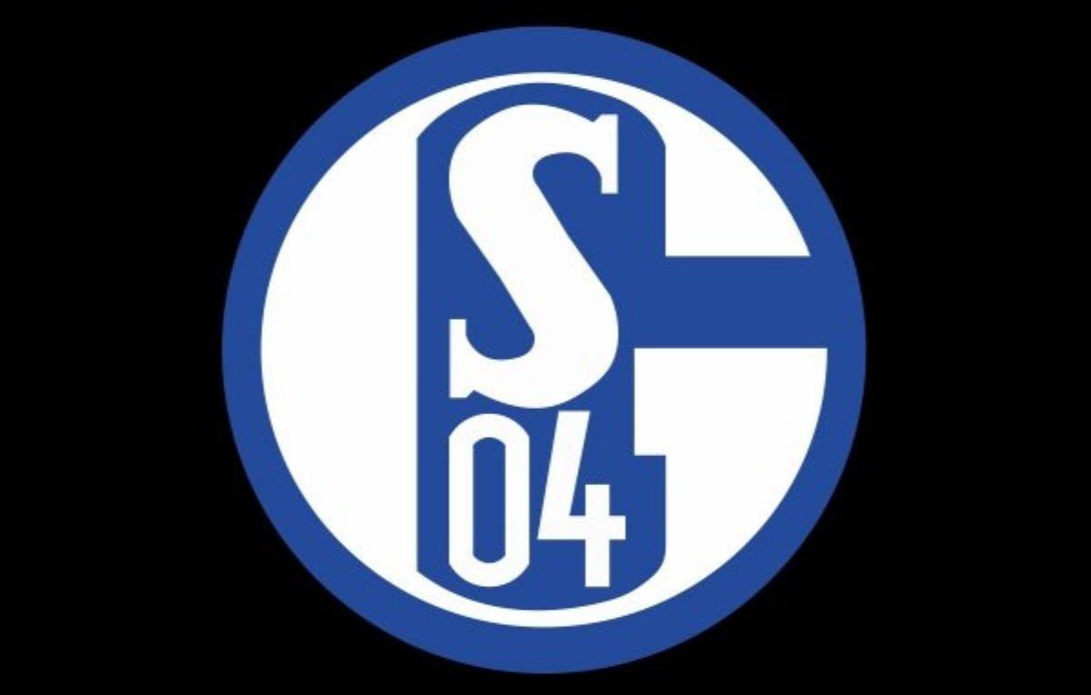 Schalke 04 Abstieg
